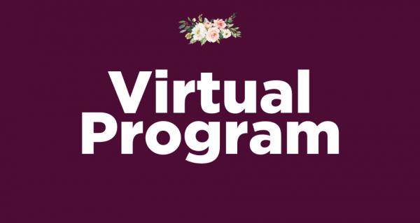 virtual Ball program